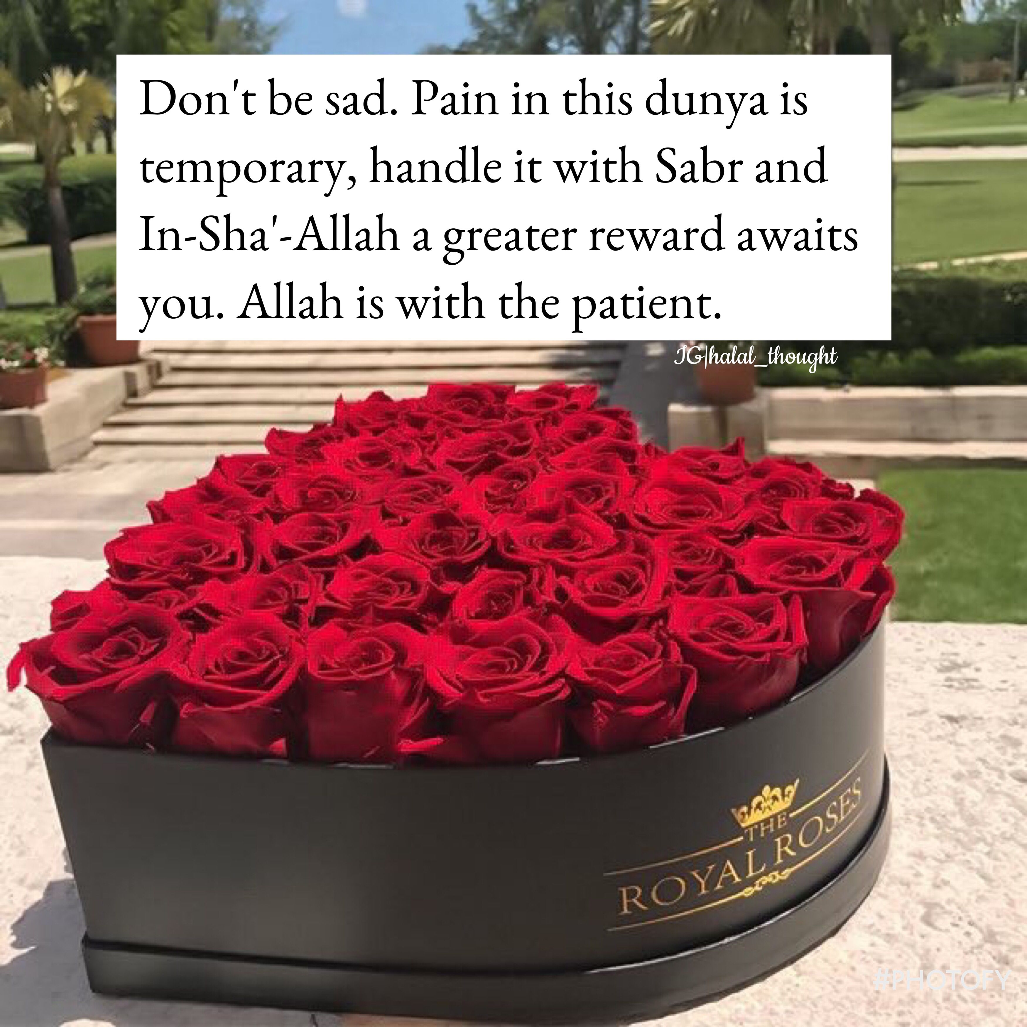 Pin By Vari Siddiqui On Islam Quotes Flower Box Gift Red Roses Flowers Delivered