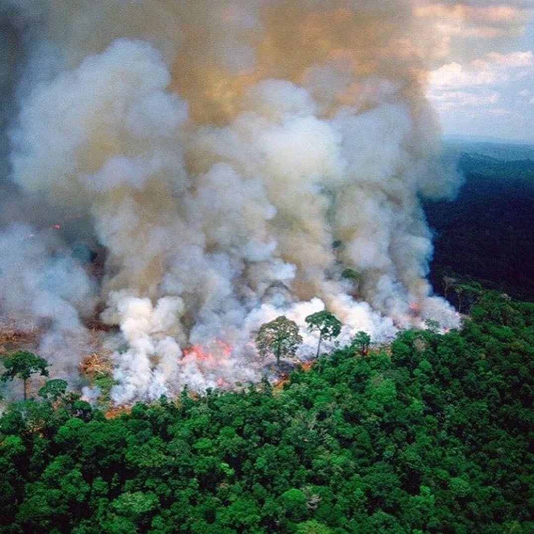 He Lungs Of The Earth Are In Flames The Brazilian Amazon Home