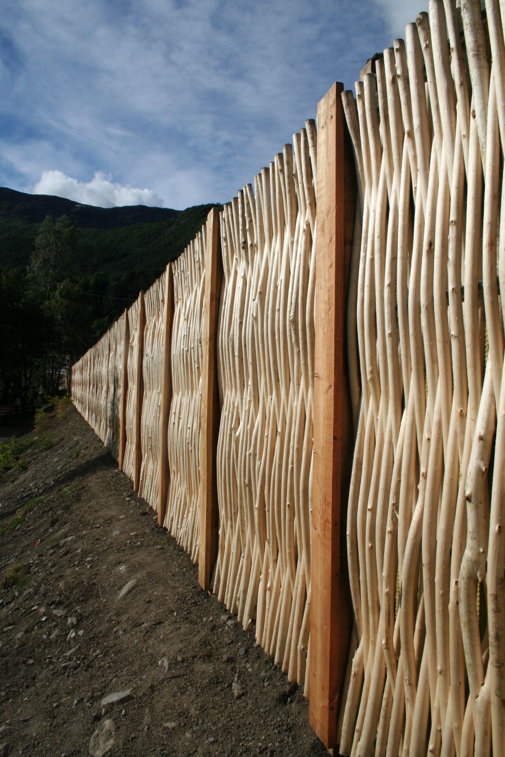 Mur anti-bruit en saule | Jardin : plantes & idées | Pinterest