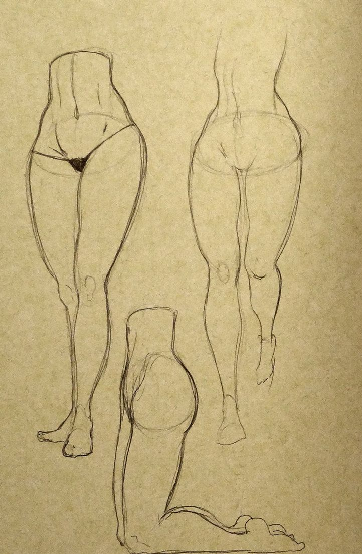 Female Leg Studies 02 by ~OliverBarraza on deviantART | Art ...