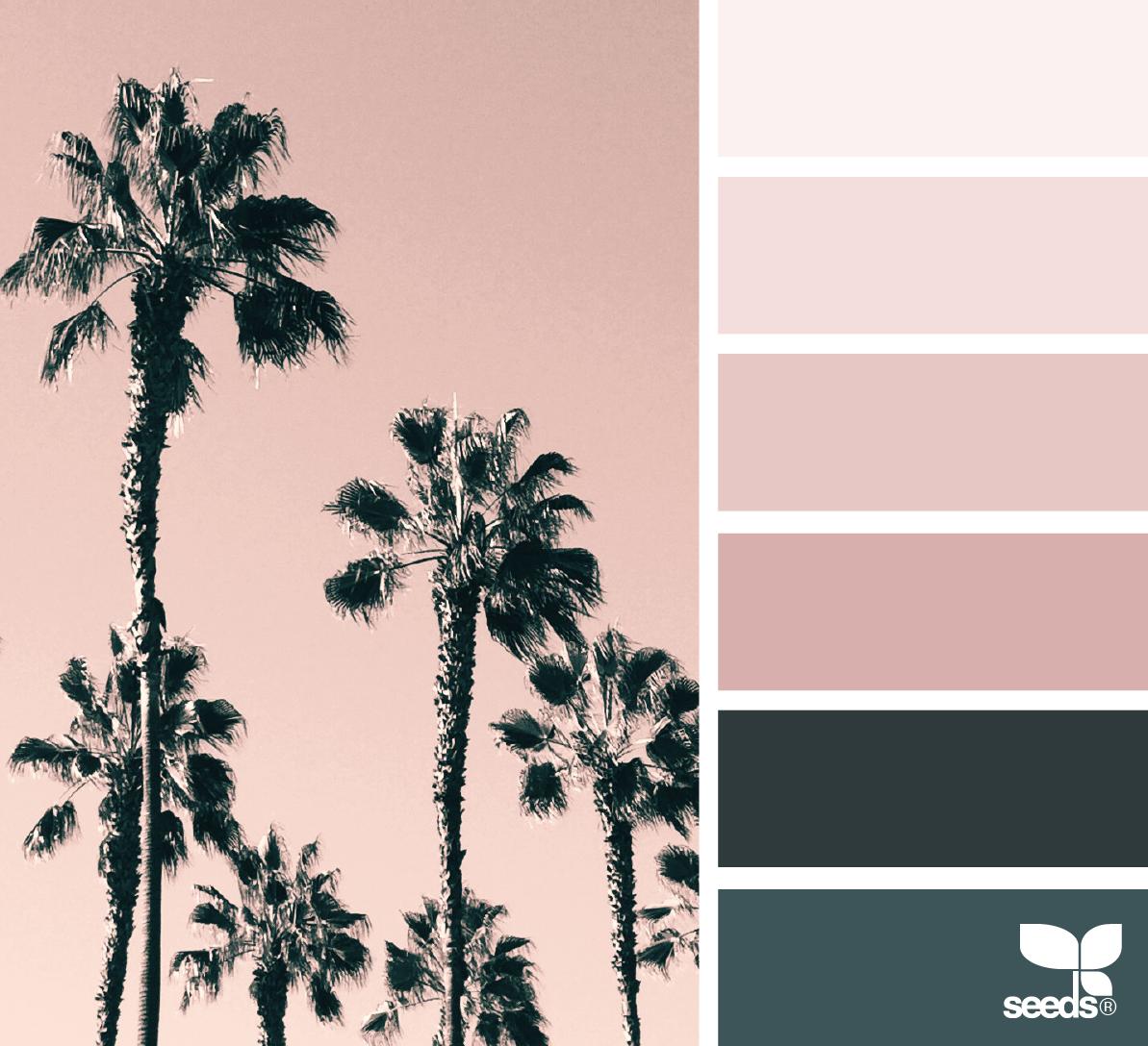 Color Tropic COLOR