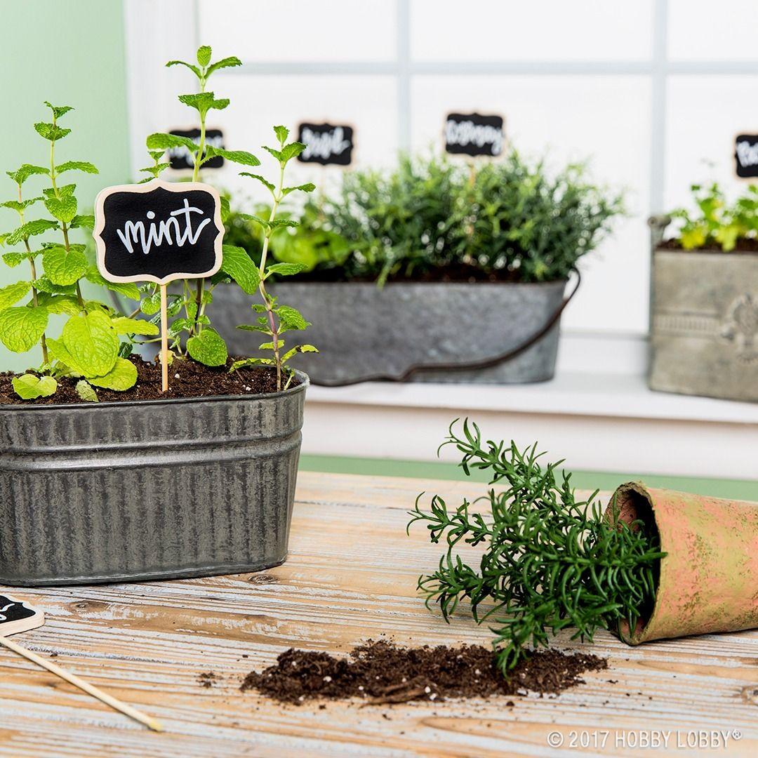 bring some greenery into your kitchen with indoor container gardens apartment garden garden on outdoor kitchen herb garden id=26322