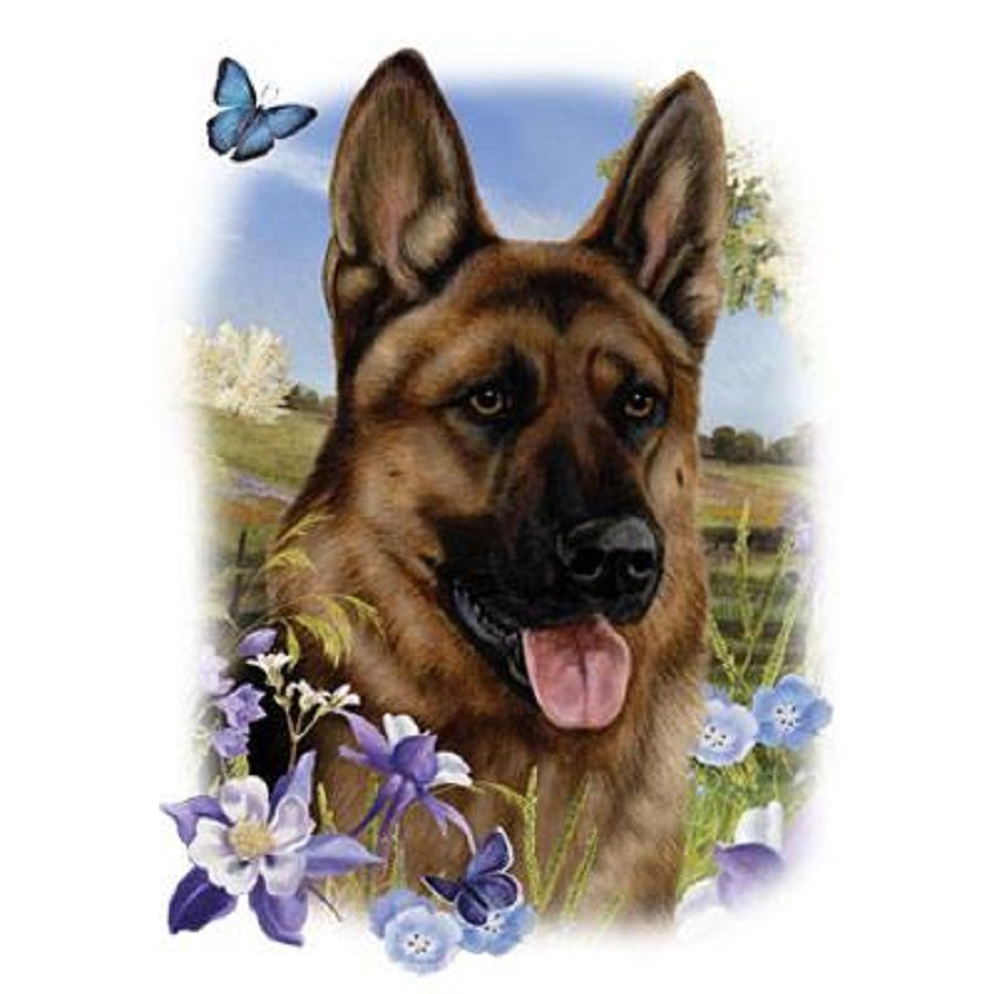 Details About German Shepherd Dog With
