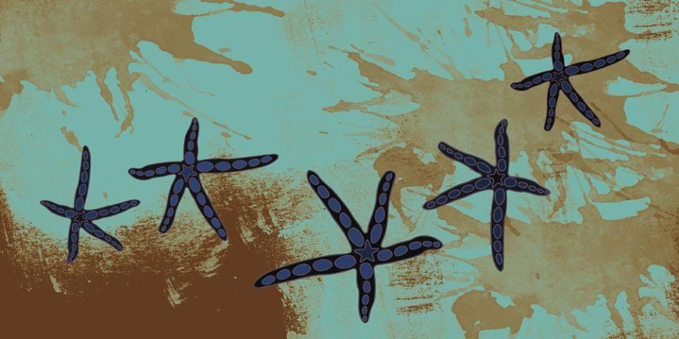DAREL,estampa ideal para quadro,almofada e decoração. www.tjudesign.com