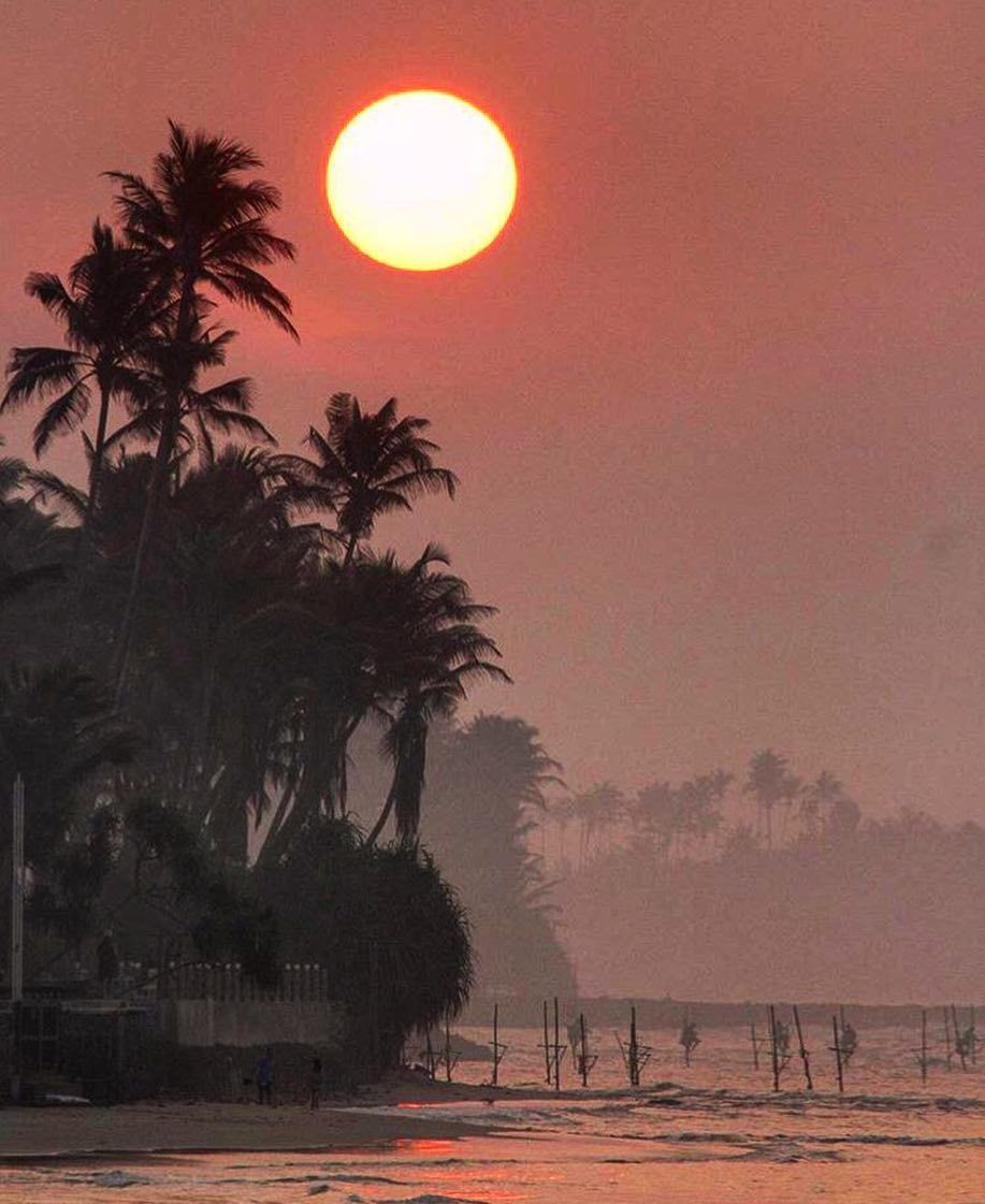 Sunset at iconic #SriLanka Kabalana Beach  Photograper @zipovski  #TravelSriLanka #VisitSriLanka #Sunset #Tree #stiltfishing #stilts #Beach #coconut #holiday #instagram #instatravel #instanature