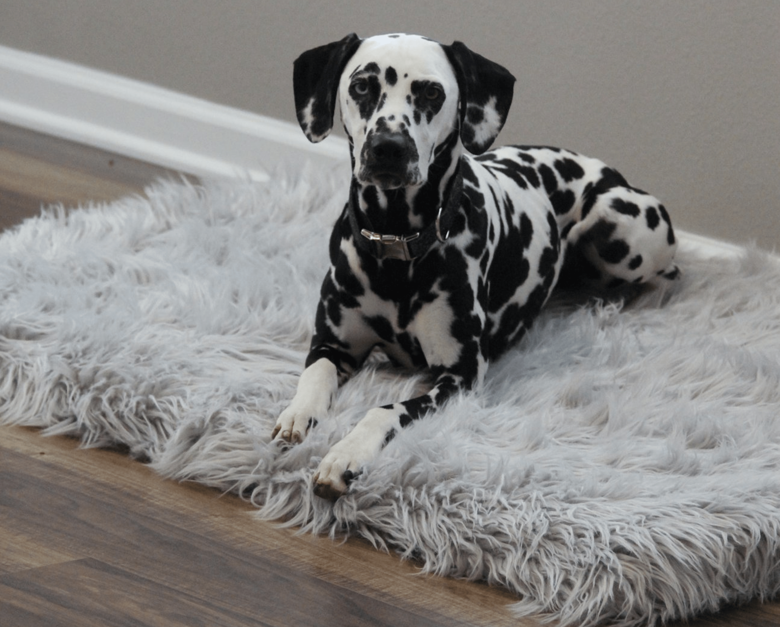 PupRug™ Faux Fur Orthopedic Dog Bed Rectangle Grey