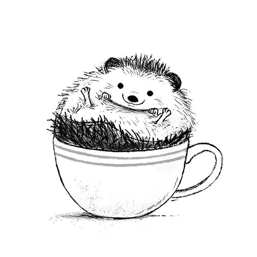 Hedgehog Sitting In A Tea Cup Illustration By Chris Chatterton Hedgehog Illustration Hedgehog Drawing Hedgehog Art