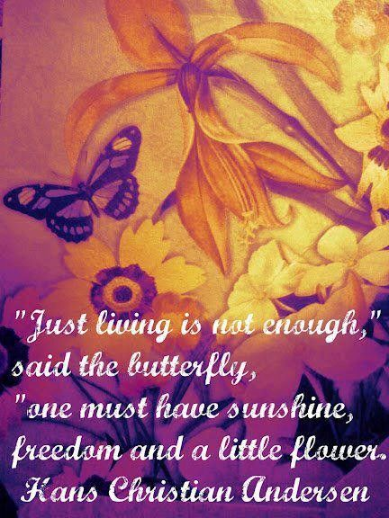 Freedom Hans Christian Anderson Quotes Good Morning Quotes Thoughts Quotes