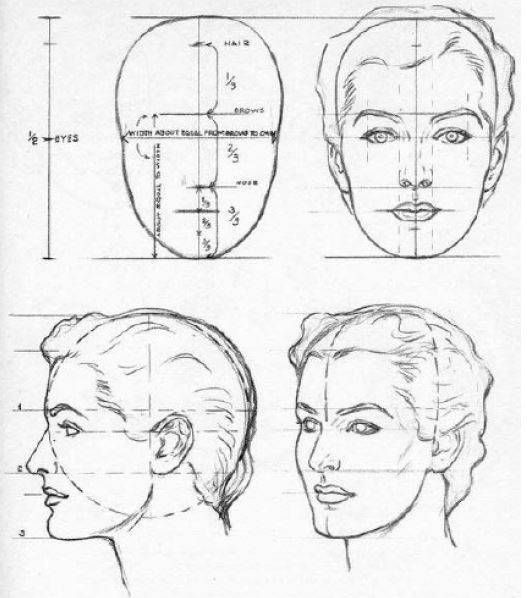 Saber cómo aprender a dibujar rostros o caras de humanos paso a paso ...