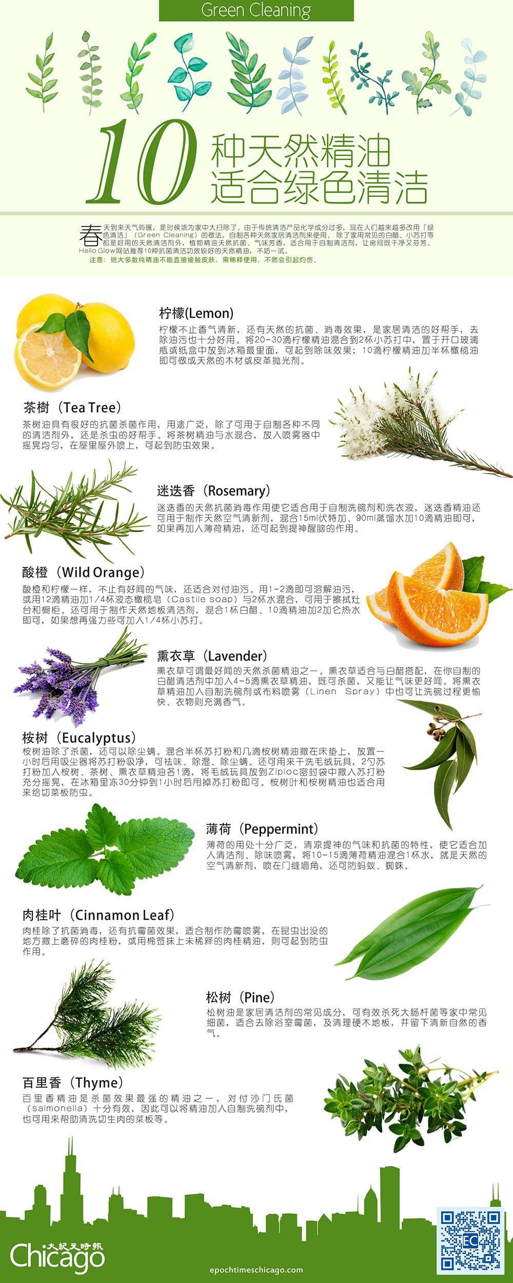 10种天然精油 适合绿色清洁 Green Cleaning Lemon Tea Tea Tree