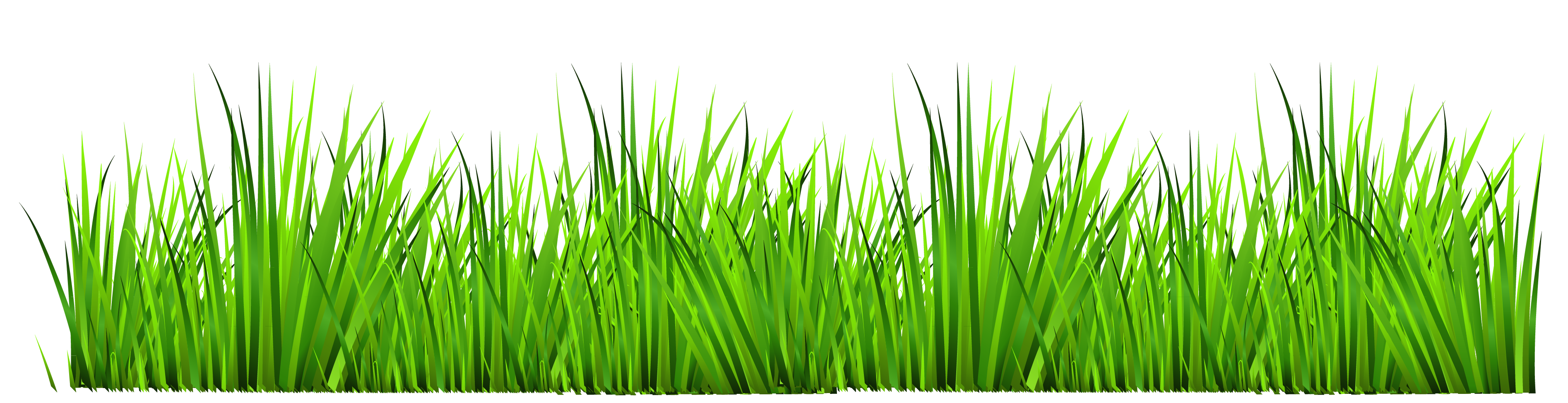 grass clipart transparent grass clipart free clip art images png rh pinterest co uk grass clipart black and white grass clipart png