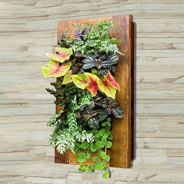 Designed For Architects And DIY Homeowners, The GroVert Living Wall Planter  From BrightGreen Is Here