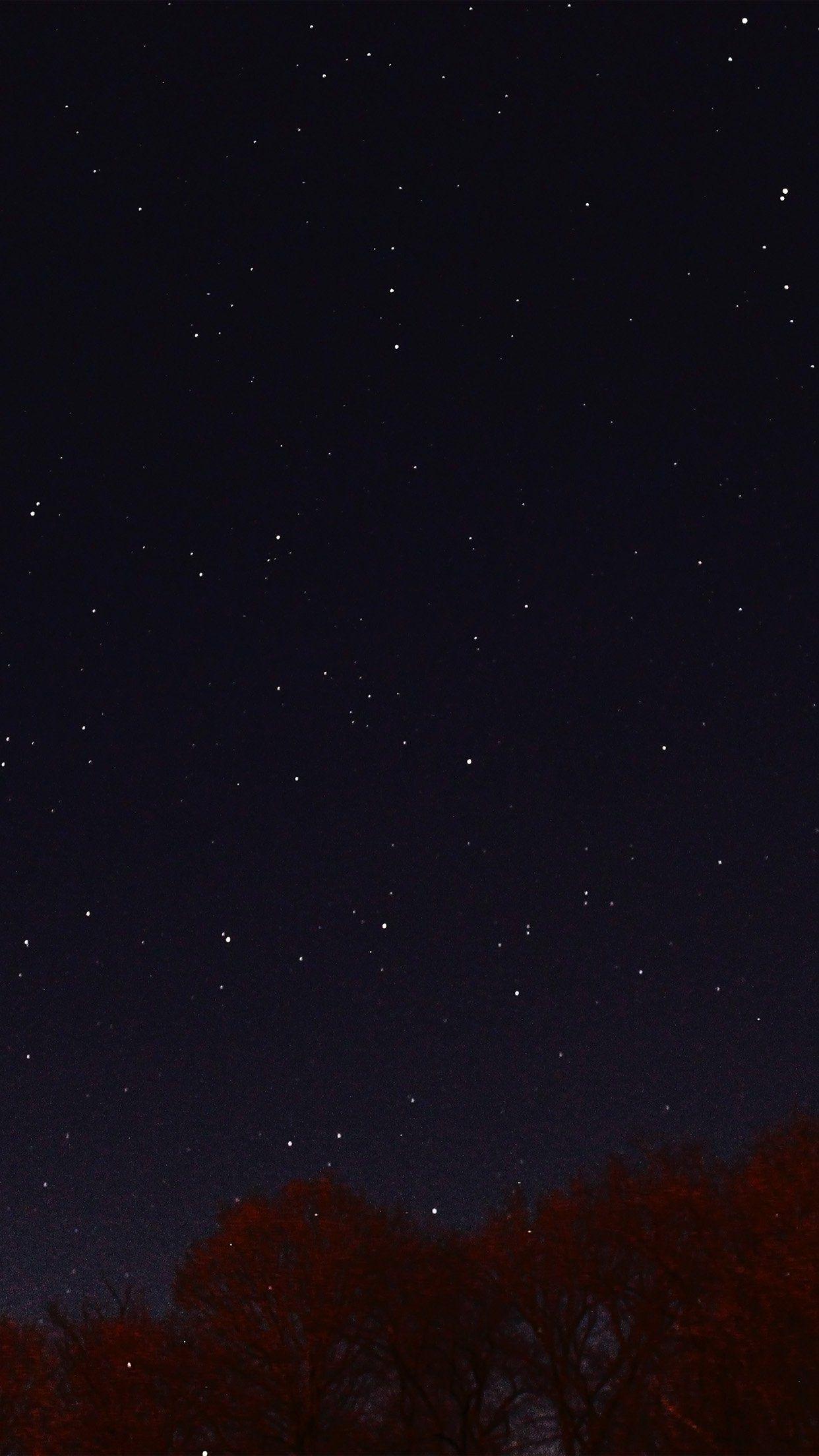 Night Sky Dark Star Lights Tree Nature iPhone 6 plus