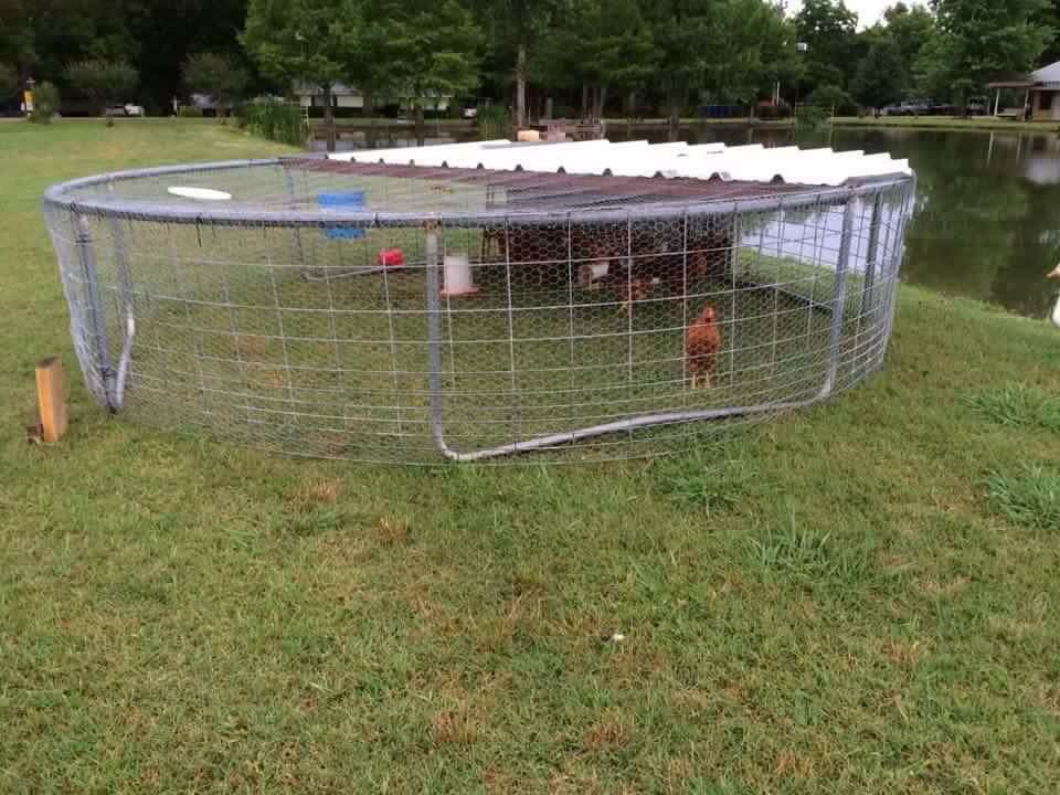 Pin about Building a chicken coop on Garden ideas