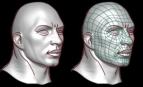 99% of human faces are identical to each other in anatomy, so the topology would not differ much.