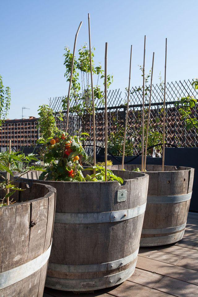Terrasse bois en ville avec potager Rooftop garden, Gardens and