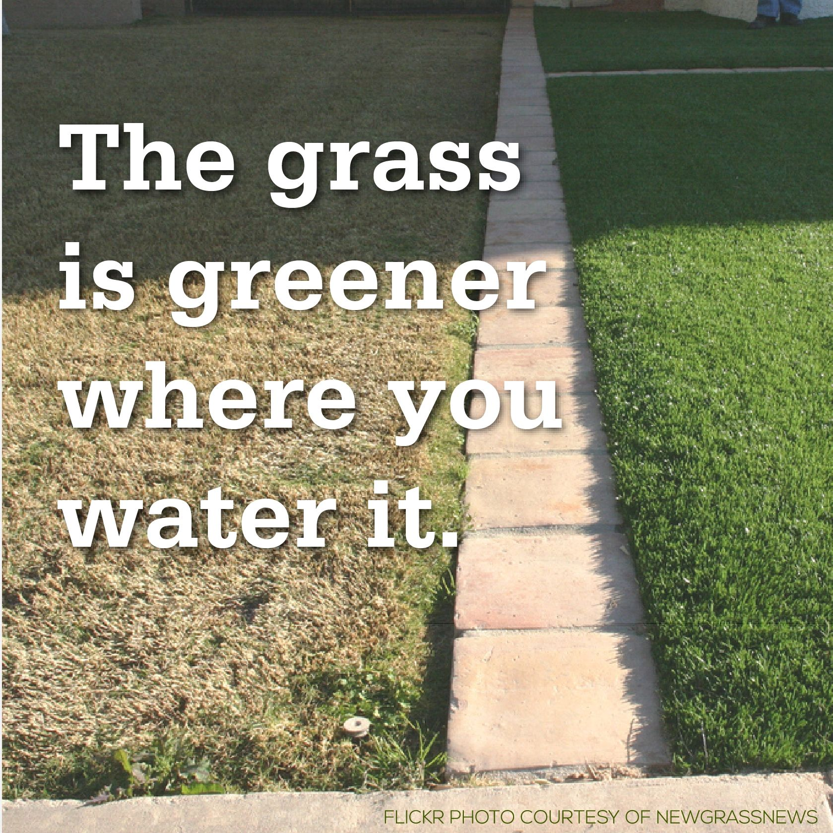 The grass is not always greener on the other side.