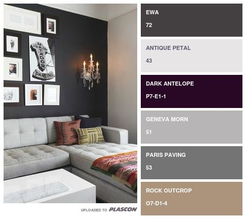 Find Your Perfect Colour Swatch With The All New Plascon Swatch It