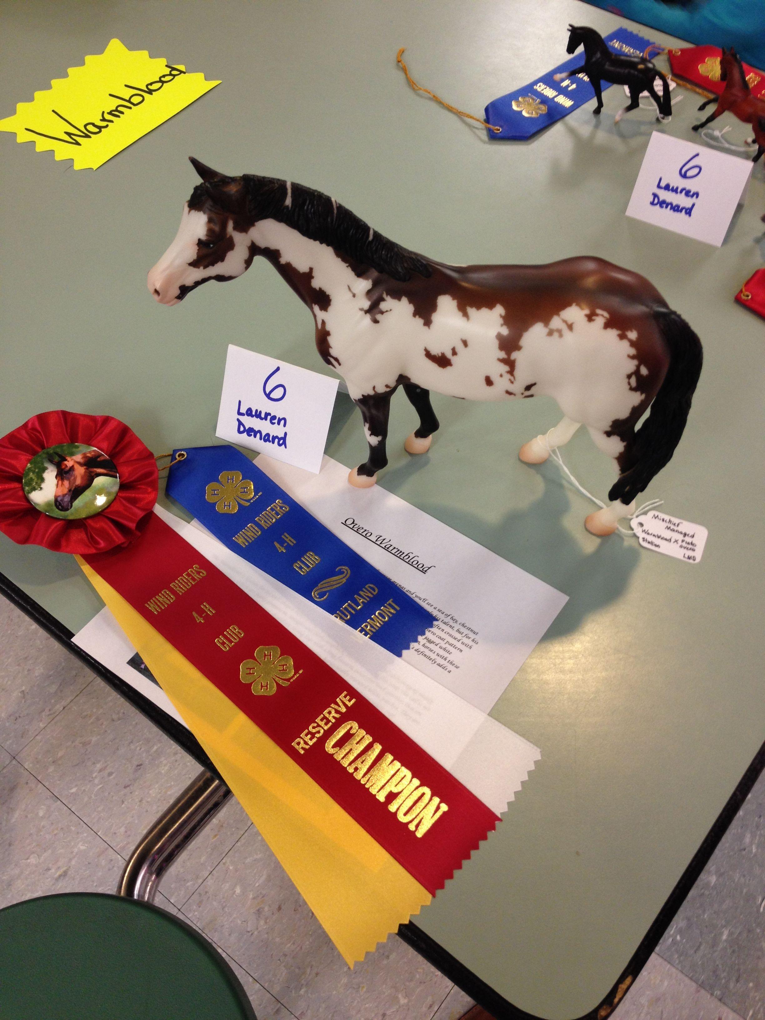 Wind Riders 4-H Model Horse Show. Wapiti's winnings!