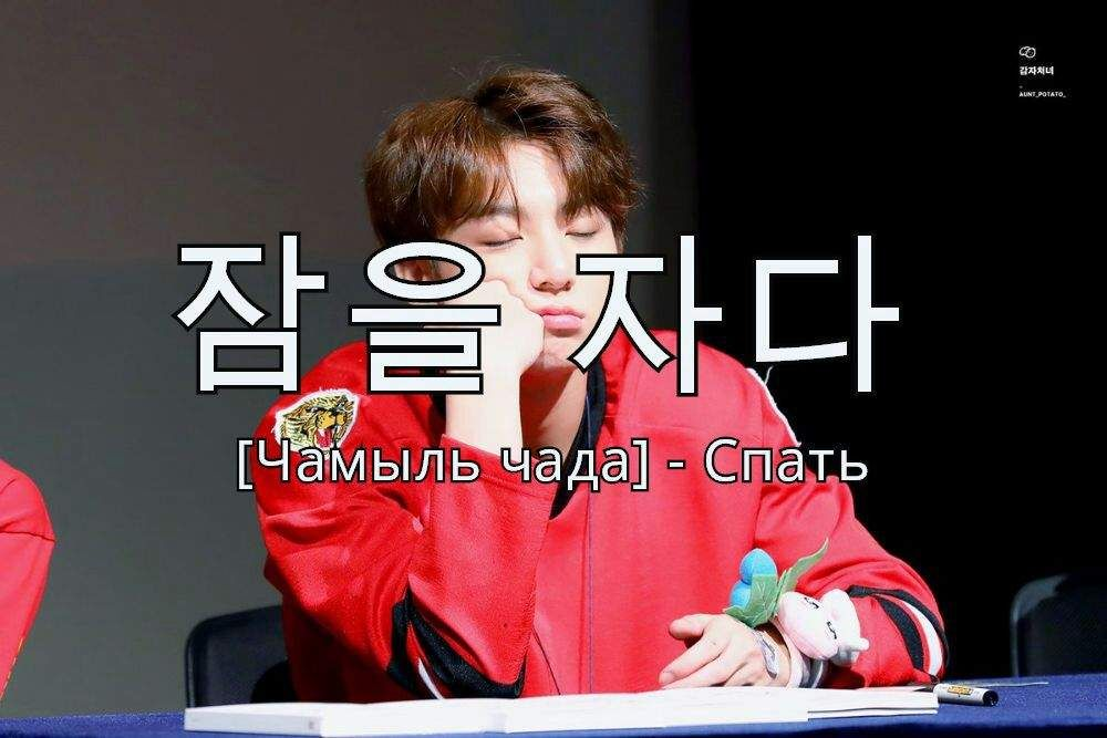 Когда ты хочешь учить корейский и наслаждаться бантанами ...