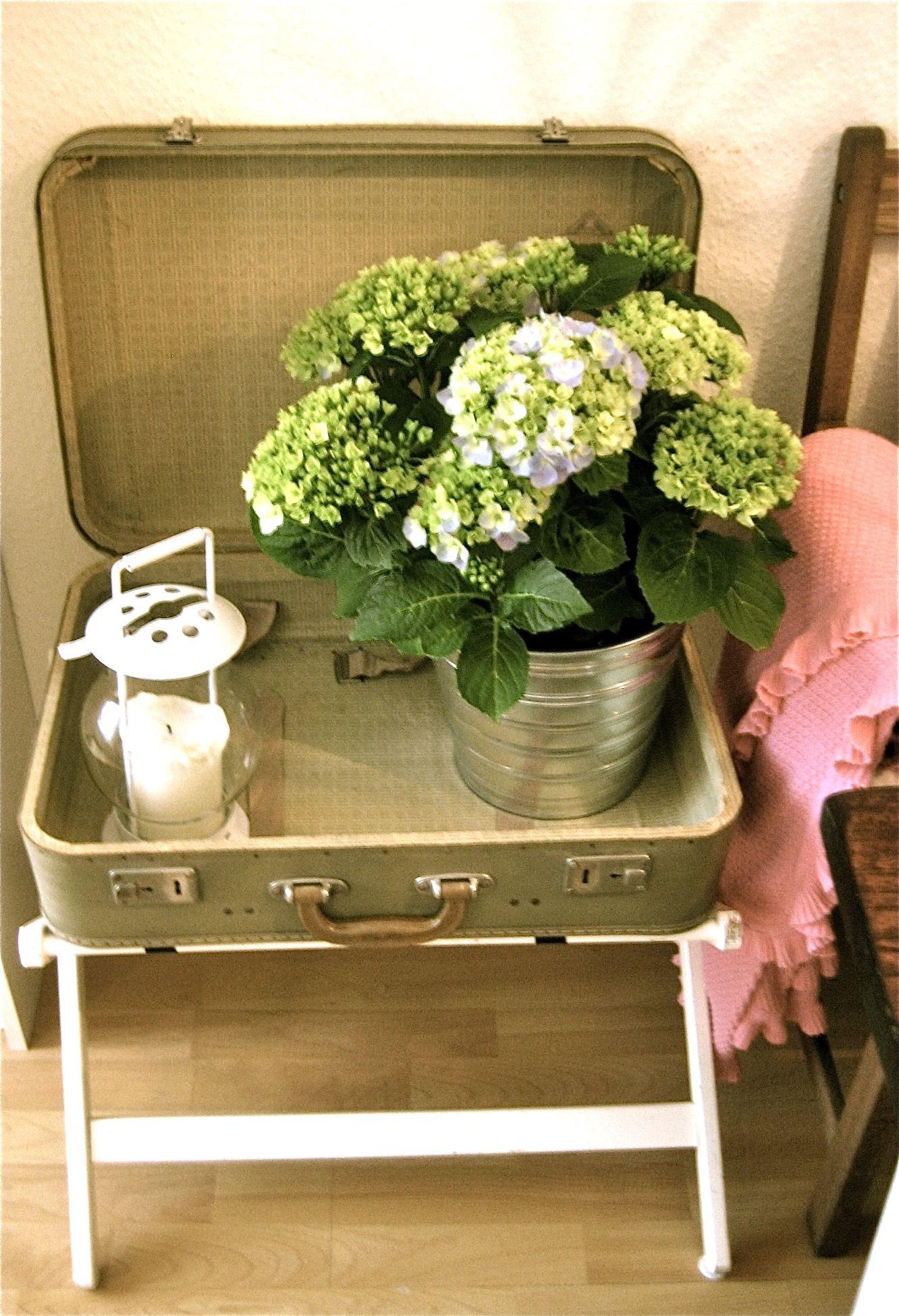 Alter Koffer Als Tisch Alte Koffer Koffer Deko