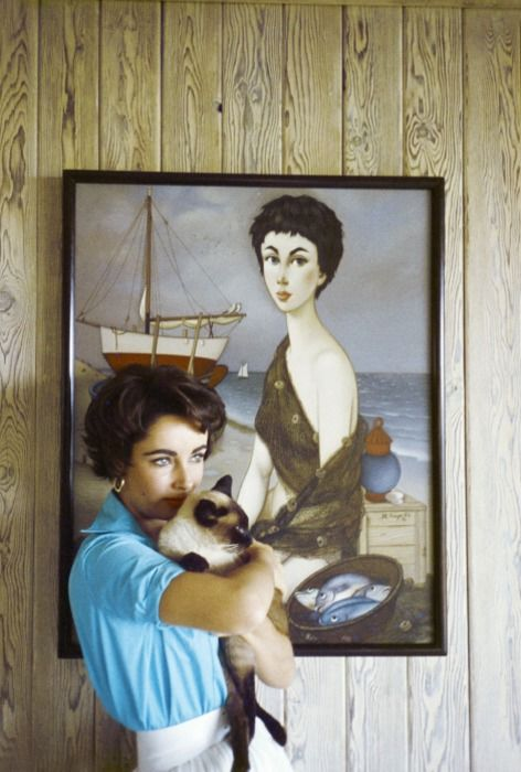 Liz Taylor and her siamese cat.