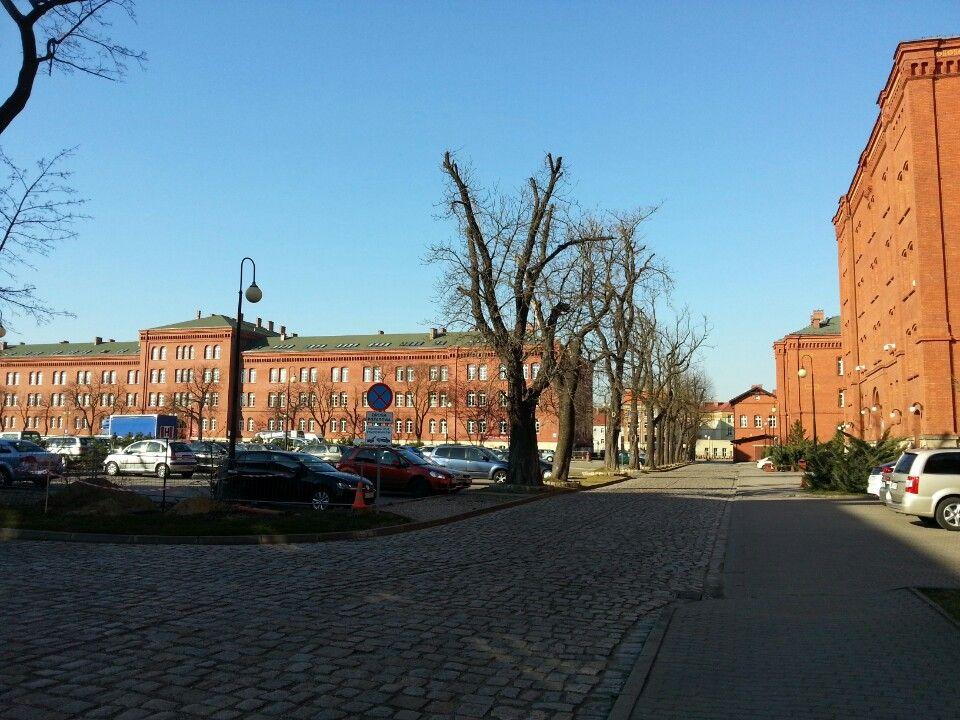 Pwsz Im Witelona W Legnicy Applied Science European Countries University