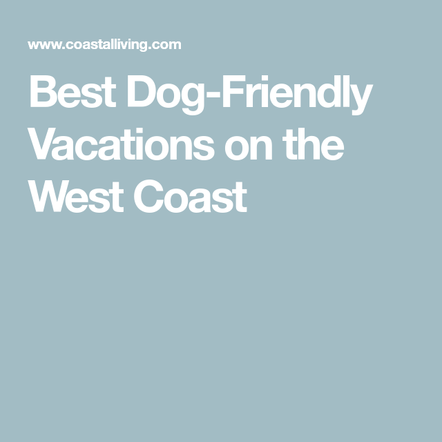 Best Dog Friendly Vacations On The West Coast