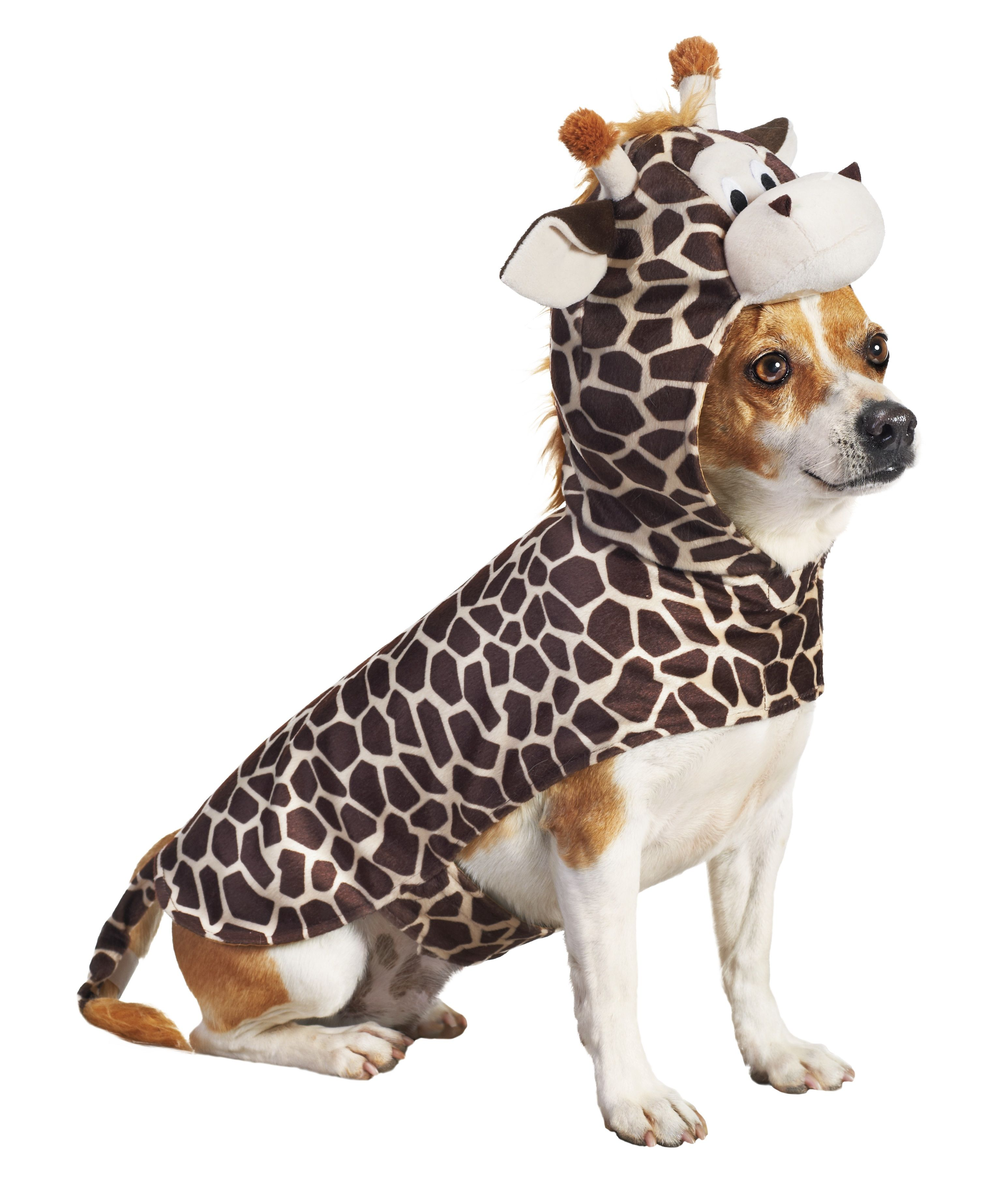 Giraffe Dog One Of Petco S Top 10 Halloween Costumes For Pets
