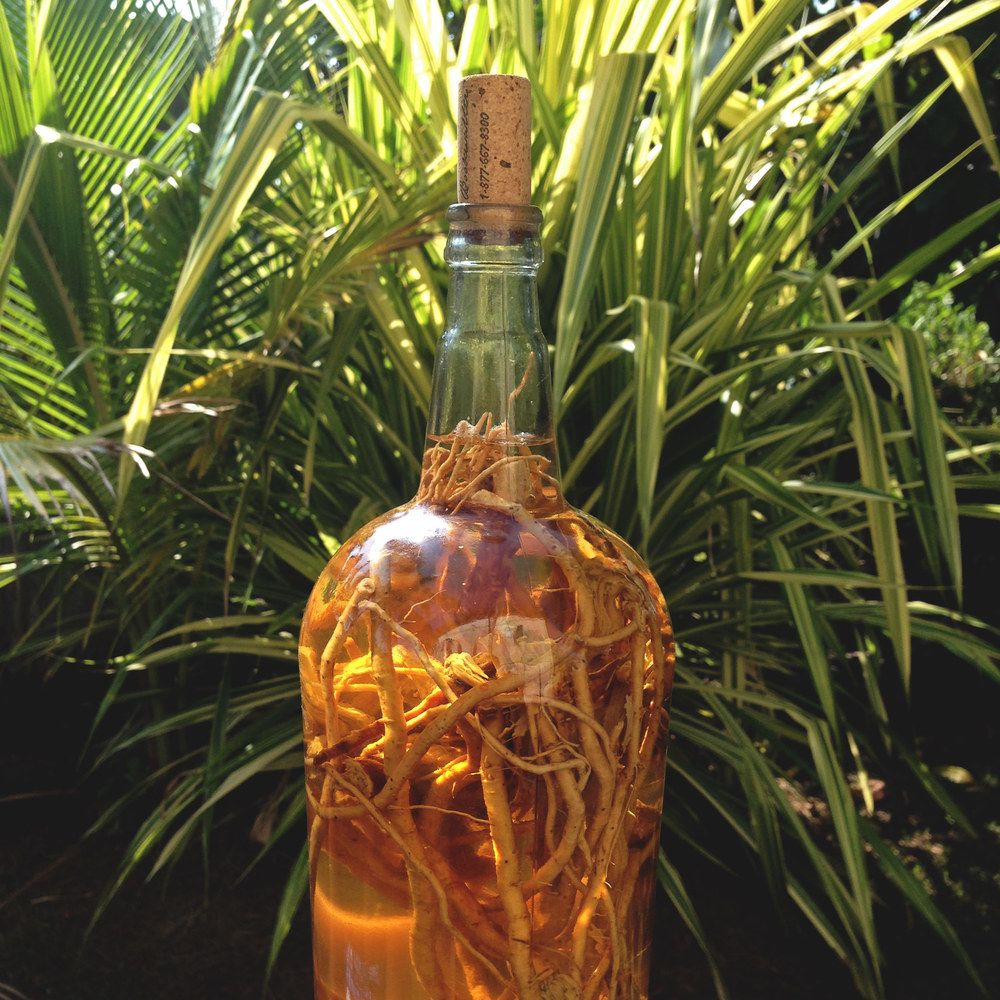 gifiti garifuna | Bottles decoration, Decor, Home decor