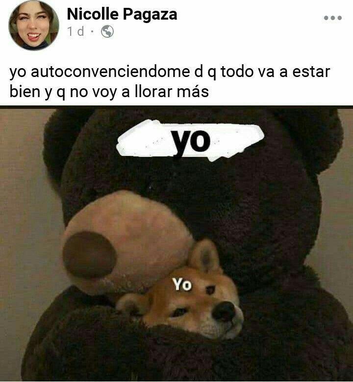 Pin De Valerin Morales En Memes De Los Buen0s Memes Divertidos Meme Divertido Meme Gracioso