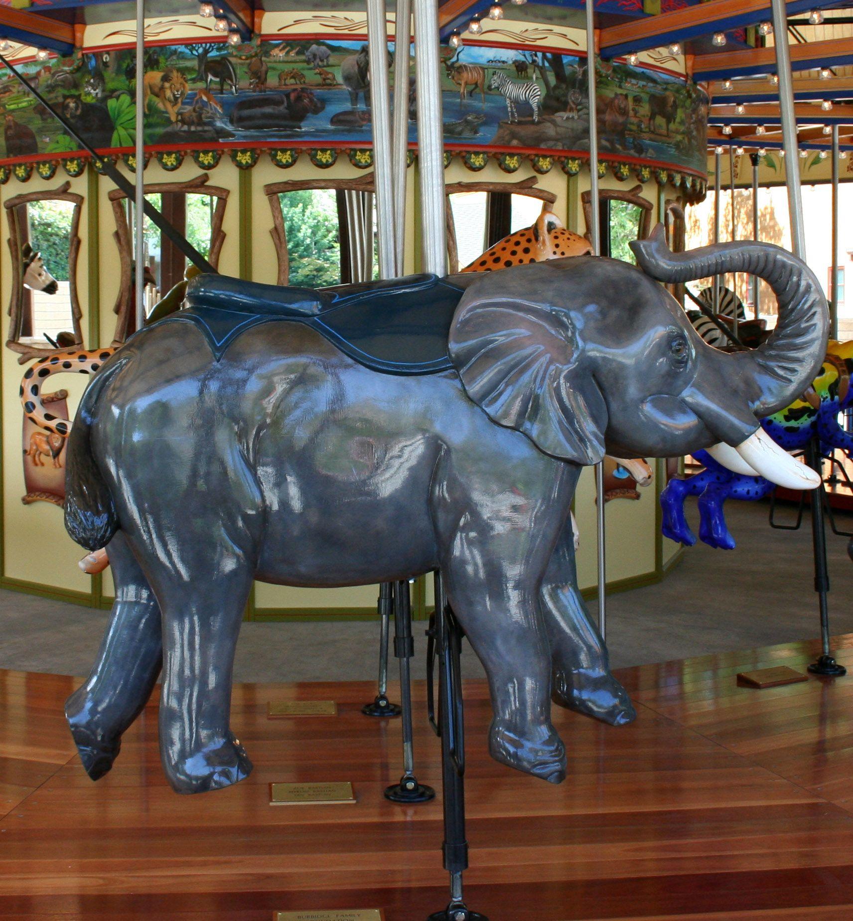 National carousel association denver zoo carousel african wild dog - Nice Big Bulky Elephant On The Carousel In Hogle Zoo Salt Lake City Utah