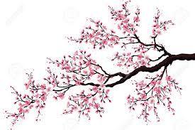 Resultado De Imagen Para Dibujos Arboles Chinos Cerezos Arbol De Cerezo Arbol De Cerezo Dibujo Flor De Cerezo