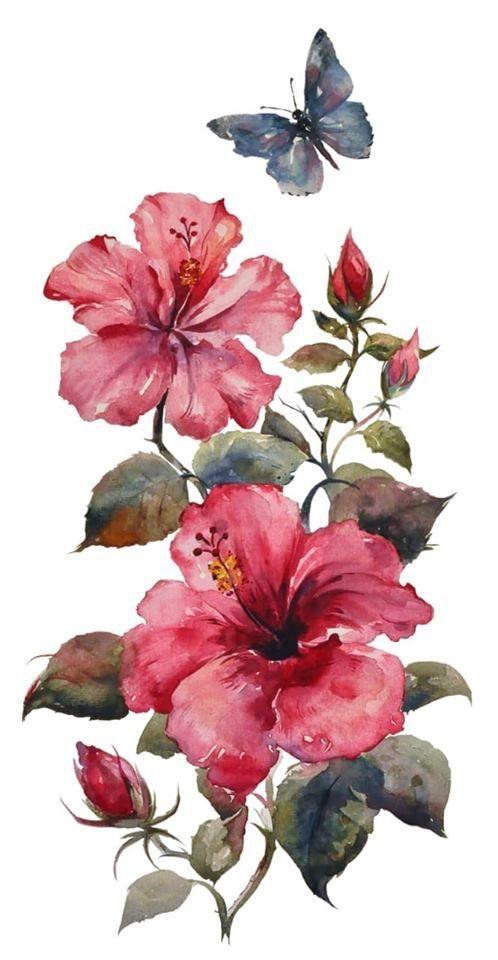 watercolour hibiscub flower