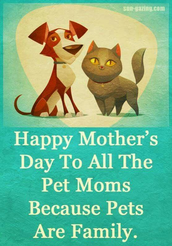 Happy Mothers Day to all the pet moms because pets are family