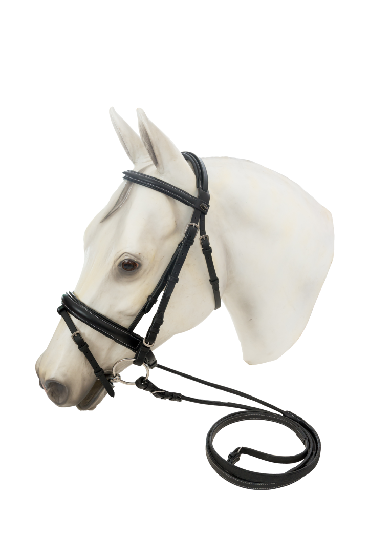Pin by English Tack Shop on Bridles | Horse bridle, Dressage