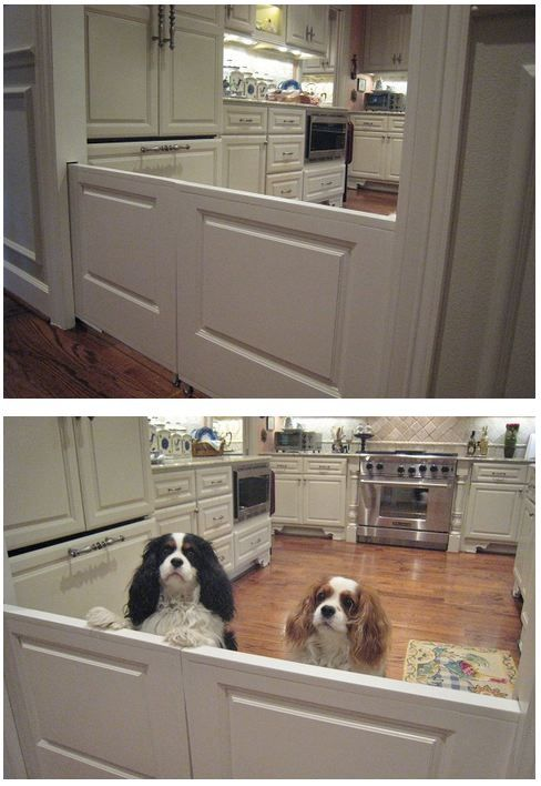 My sister installed built-in dog doors in her new home! & My sister installed built-in dog doors in her new home! | Puppy fun ...