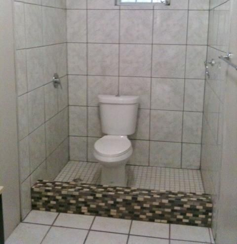 Nothing Says Efficiency Like A Toilet In The Shower