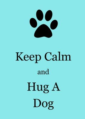 hug a dog...... I miss the dog hugs. My beautiful dog died of old age recently. And I miss her terribly. I especially miss our cuddles.... The memories are bittersweet. We had such happy times together...if only things always stayed the same... But life keeps changing... :( Miss you Xx