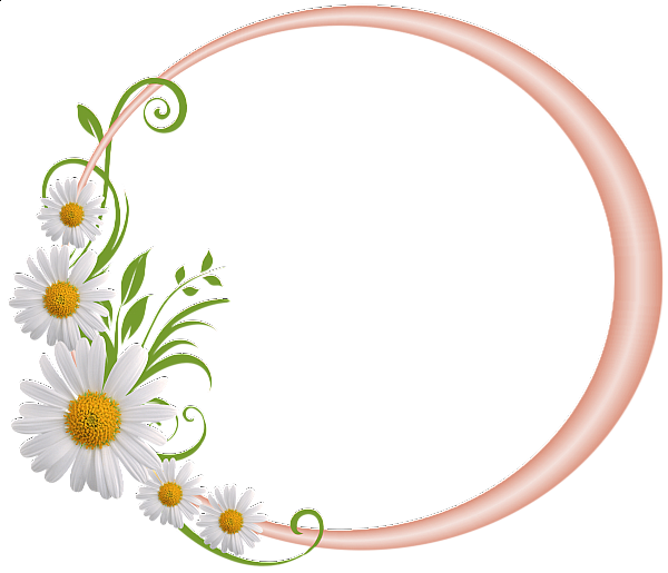 Cream Round Frame with Daisies Clip art frames borders