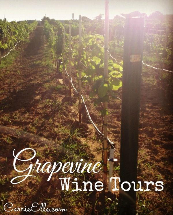 All about grapevine wine tours with a coupon code too dallas all about grapevine wine tours with a coupon code too fandeluxe Images