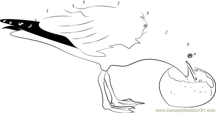 A Seagull Takes A Break Connect Dots Horse Coloring Pages Hello Kitty Colouring Pages Superhero Coloring Pages