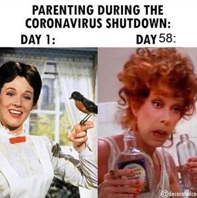 Parenting Meme Round Up Homeschool Memes Funny Memes Really Funny Memes