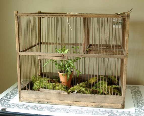 Rustic antique wire wood bird cage by CountryAnthropology on