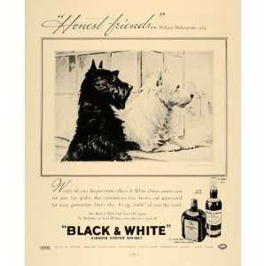 Pin On Scotties Westies Black White