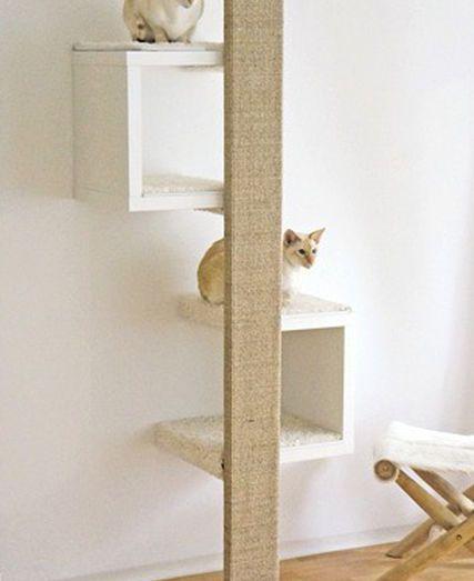 ein g nstiger designer kratzbaum kratzm bel mit sch nem design kater. Black Bedroom Furniture Sets. Home Design Ideas