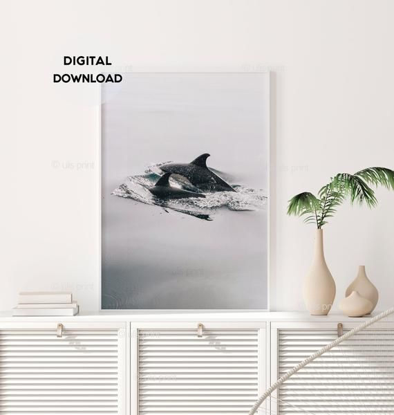 Photo of Dolphins Print, Baby Dolphin Art Print, Animal Photography, Animal Print, Black and White, Minimalis