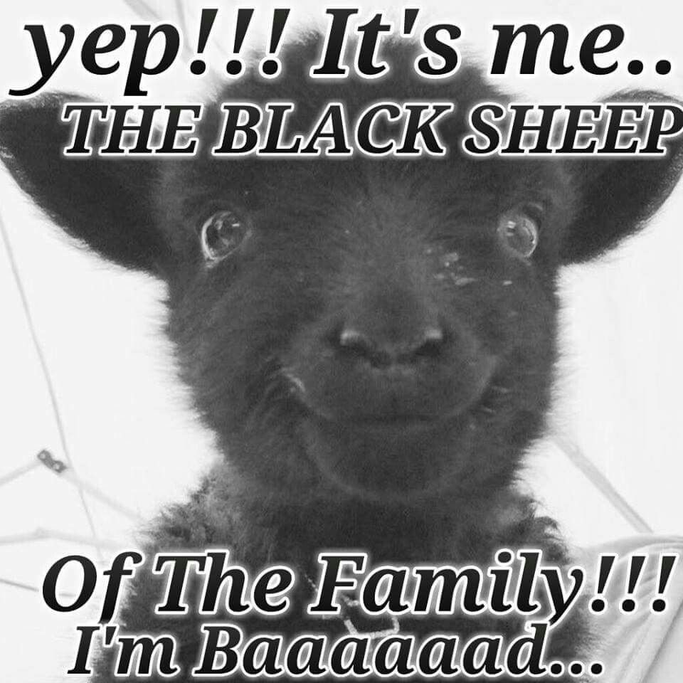 I M The Black Sheep Of The Family Black Sheep Quotes Black Sheep Of The Family Black Sheep