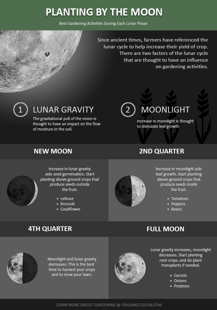 Gardening By The Moon Calendar Farmers Almanac