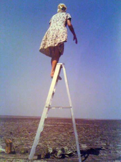 ratak-monodosico:    (Maria Reiche atop one of the ladders she used to study and map the Nazca lines in Peru. Photo by Bruce Chatwin. Source.)